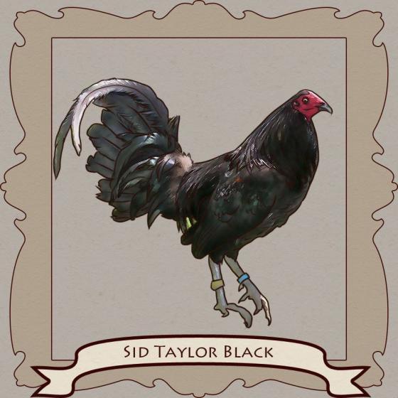 Sid Taylor Blacks: The Stylish Cutter » Reach Unlimited