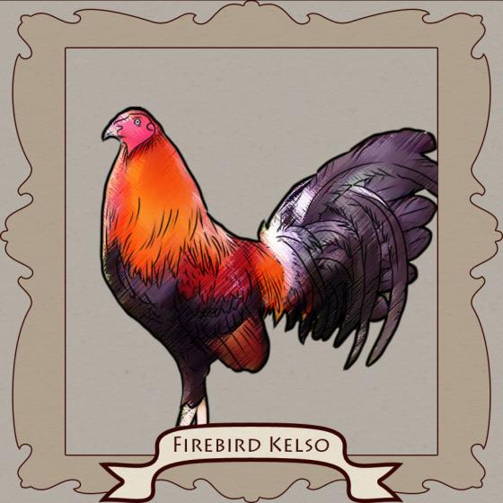 Kelso: The Smartest Fighting Rooster AND the Magic of Crossbreeding