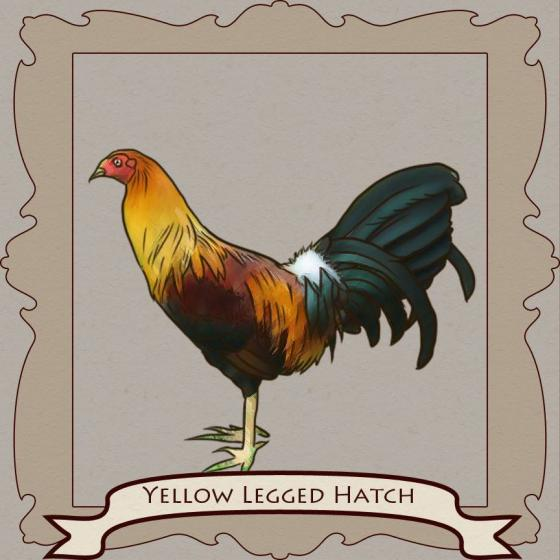 Gamefowl Fighting Styles! » Reach Unlimited
